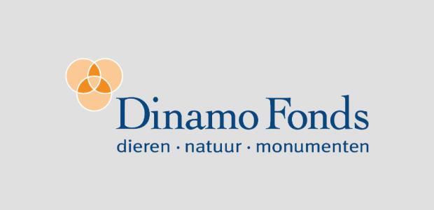 Afbeeldingsresultaat voor dinamo fonds logo